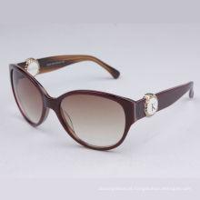 fabricantes de óculos de sol (B105 C03)