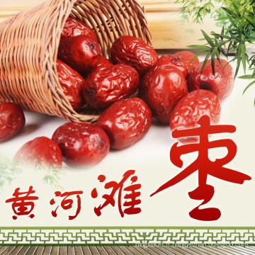 Jujube rouge chinois séché biologique