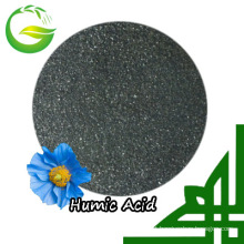 Shiny Flake Humic Acid Flake Appearance