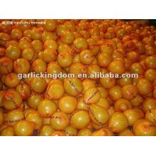 Neue rote Honig Pomelo