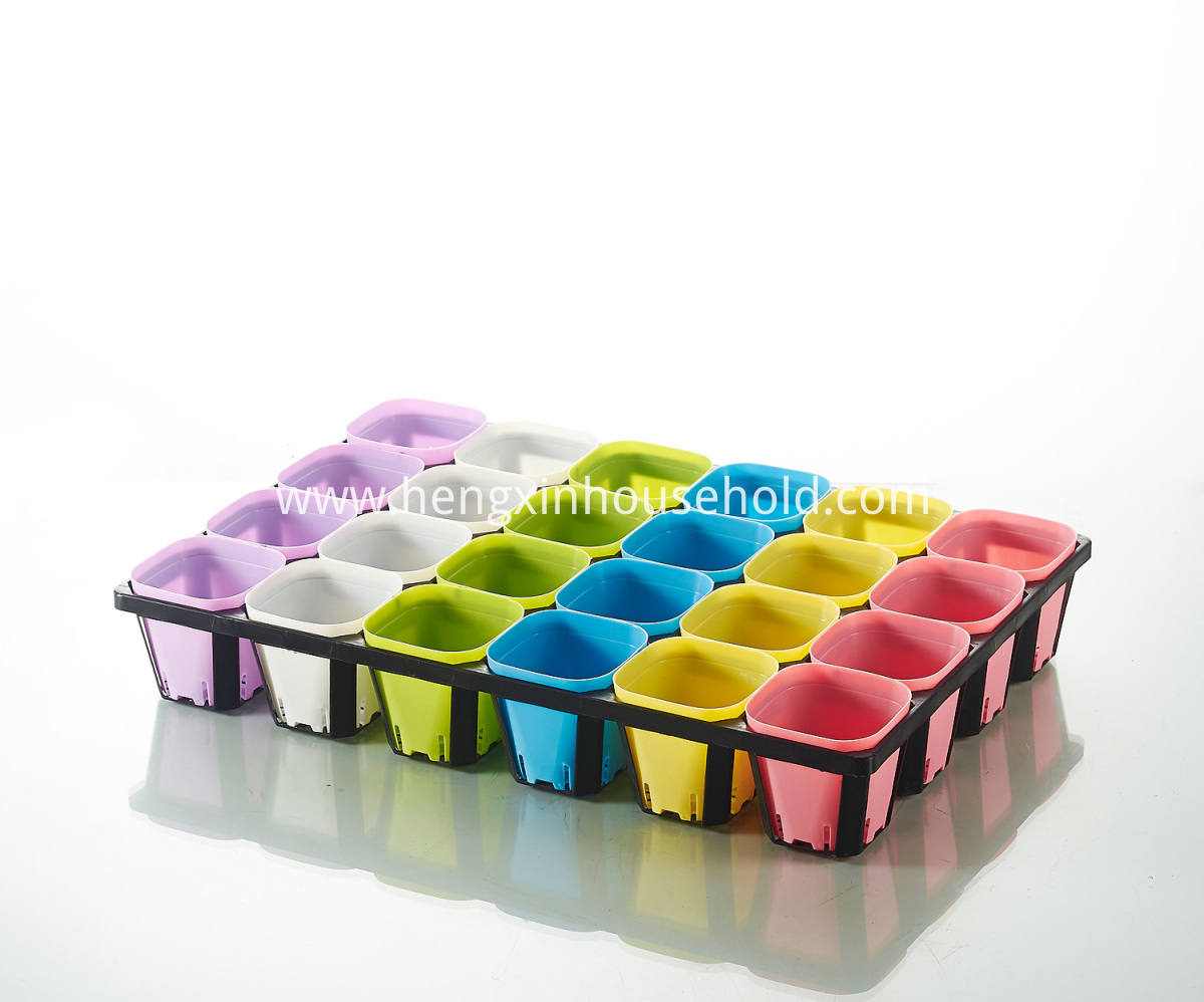 Divided Black Trays