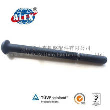 Black Surface Treatment Steel 10.9 Grade Huck Bolt
