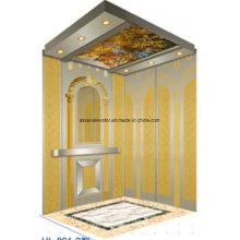 Ascenseur d'ascenseur de passager ascenseur d'ascenseur à la maison d'or gravant le miroir Hl-X-044