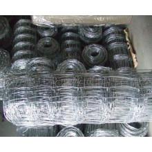 Electro galvanizado de hierro de malla de ganado de esgrima (anjia-528)