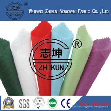 Customrized Colorful Nonwoven for Shopping Bag/Fashion Woman Bags