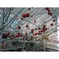 Рождественское дерево Galss Lghtup Mrcry
