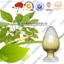 ВЭЖХ 1% -40% Ginsenoside Asian Ginseng Extract Powder