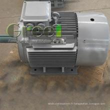 Générateur d'aimant permanent de 1200rpm pour le vent et la turbine hydraulique