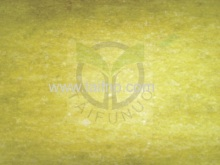 Oil-resistant Non-asbestos Sheet Ny100