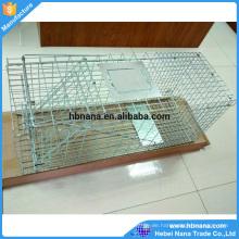 60x18x20cm galvanisierter zusammenklappbarer menschlicher Tierfallenkäfig für Verkäufe