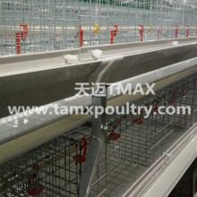 Broiler-Käfig-System für Chicken Farming