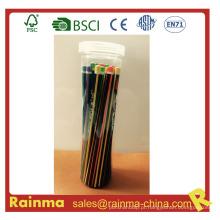Lápis de madeira 50 / 36PCS no tubo do animal de estimação