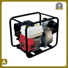 Machines de jardin de pompe à eau (TS-8020P)