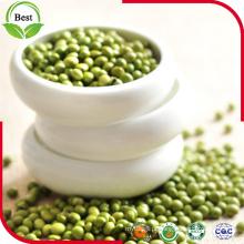 2016 New Crop Fresh Dried Green Mung Beans 3.2-3.8mm