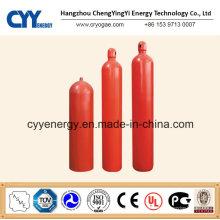 Cylindre de gaz à dioxyde de carbone à différentes capacités