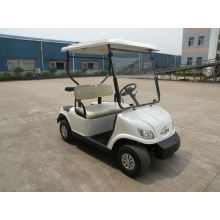 Convenient Passenger Car Mini Car 2 Seater