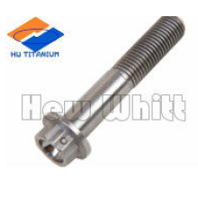 gR5 titanium flange head bolt with security slot