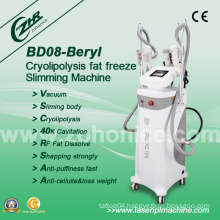 Popular Cryolipolysis Freeze Slimming Machine for Beauty Salon (BD08)