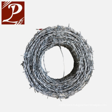 Brazilian Market Electric Galvanized Barbed Wire