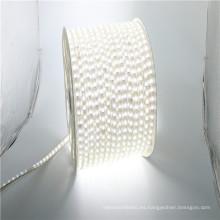 el edificio del jardín IP68 prenda impermeable 110V 220v dimmable llevó las luces de tira