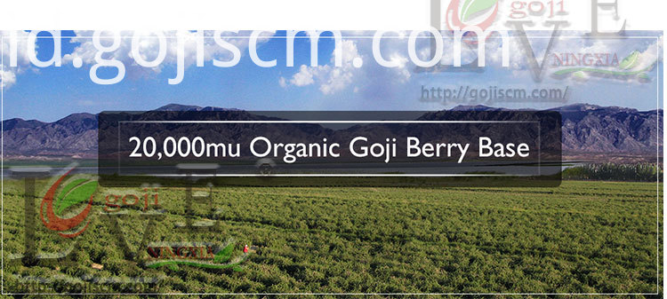 Low Pesticides Goji base