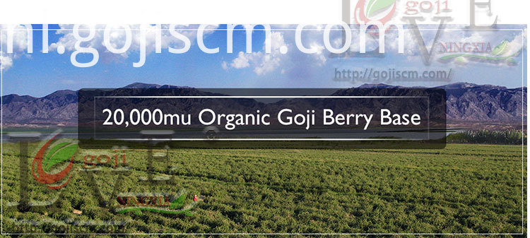 Dark Red Goji Berries base