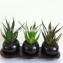Plantas suculentas artificiales verdes baratas con el pote