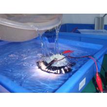 Outdoor Waterproof IP67 Dimmable 12V-24V PAR36 LED Spotlight/Landscape Light with ETL