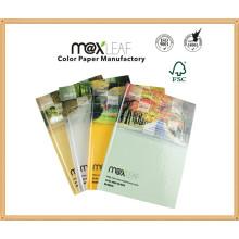 A5 - 60 feuilles de papier journal en spirale Papeterie pour les écoles Fournisseur Note personnalisée