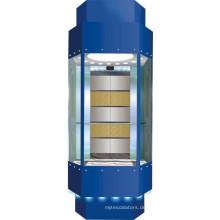 Gebäude Aufzug Aufzug mit Hersteller Preis