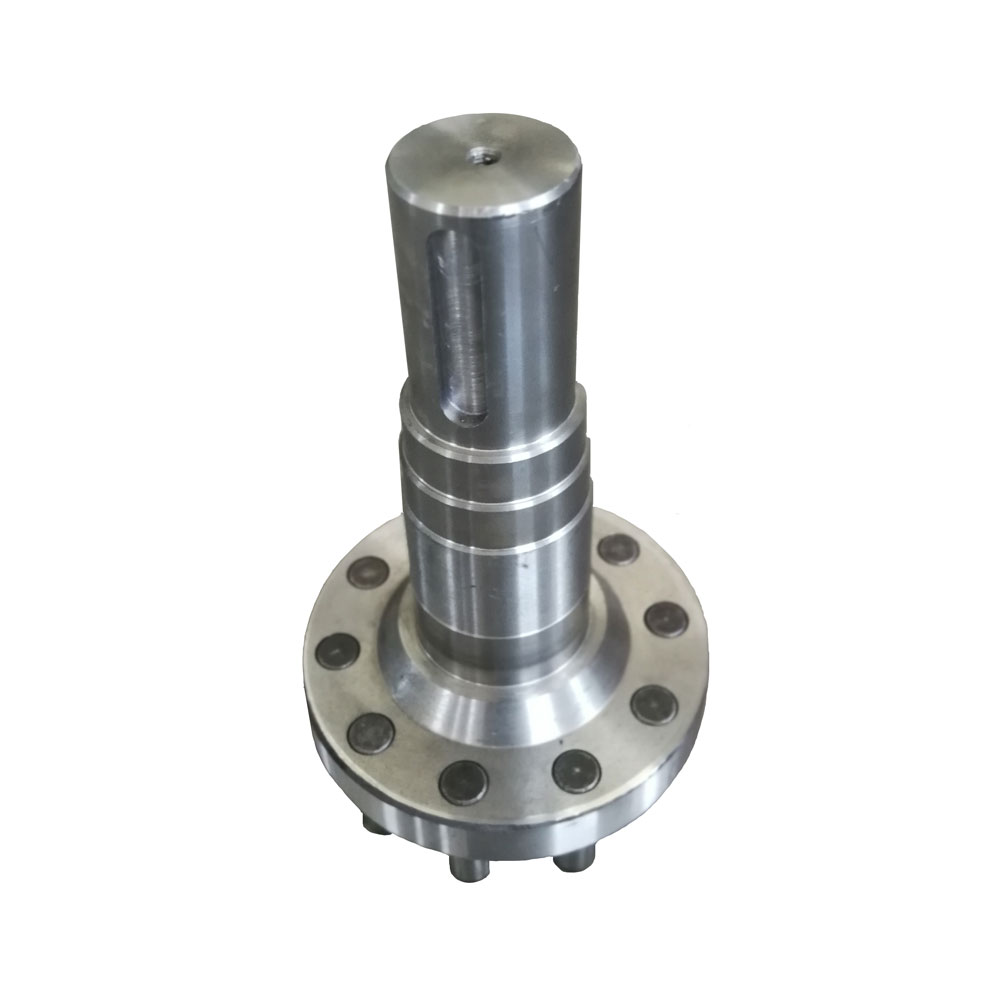 ขาออกของ Cycloidal Pinwheel Transmission Gear Motor