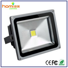 Bridgelux Chip 10W LED Fluter
