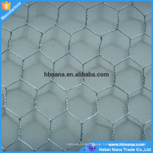 Anping factory chicken wire/ High Quality Low Carbon Steel Stainless Wire Hexagonal Wire Mesh