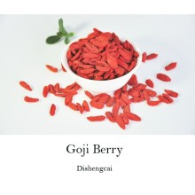 Organic Dried Goji Berry wolfberry