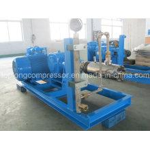 Zwischendruck-Tiefkühlpumpe (Snrb600-1200 / 50)