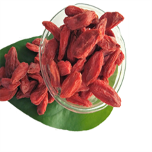 Hot Sale Torkad Certified Organic Goji Berry / Wolfberry