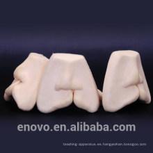 TOOTH15 (12588) Modelos de entrenamiento de suturas de labio leporino