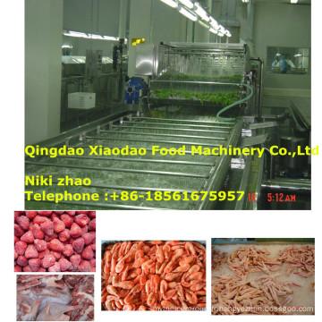 Machine de décongélation de viande / fruits de mer / fruits surgelés