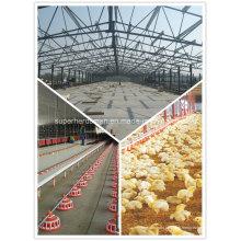 Ventilateur épuisant de haute qualité d'équipement de volaille pour la maison de ferme de poulet