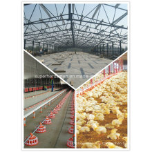 High Quality Poultry Equipment Exhausting Fan for Chicken Farming House