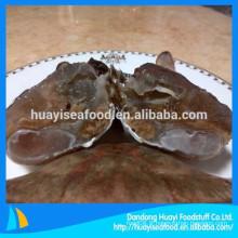 Fournisseur de crabe frais coupé congelé à bas prix