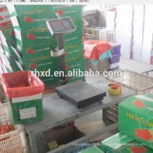 Frisches Gemüse der frischen Karotte hohe Nachfrage Qualitätsprodukte