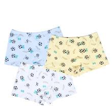 100 Algodão Boy Shorts Boxers, 10-15 Anos Jovens Underwear Boy, Preteen Kids Underwear Esportes