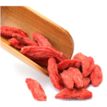 Medlar Dried Goji Berry (Wolfberry)