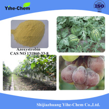 Azoxystrobin 95%TC 25%SC 50%WDG Fungicide