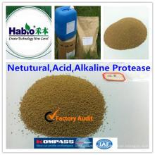 Protease ácida baseada em cepas qualificada