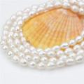 60inches lange natürliche reale Frauen-Süßwasserperlen-Halskette