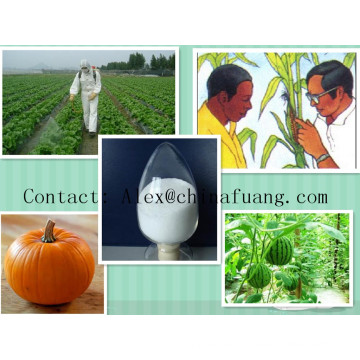 Agricultural Chemicals Bactericide Germicide Agrochemical Fungicide 81412-43-3 Tridemorph