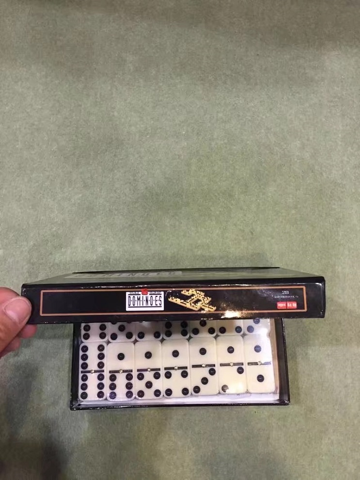 Dominoes Game Set In Color Box