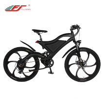 Popular wholesale sport electric bike 36V